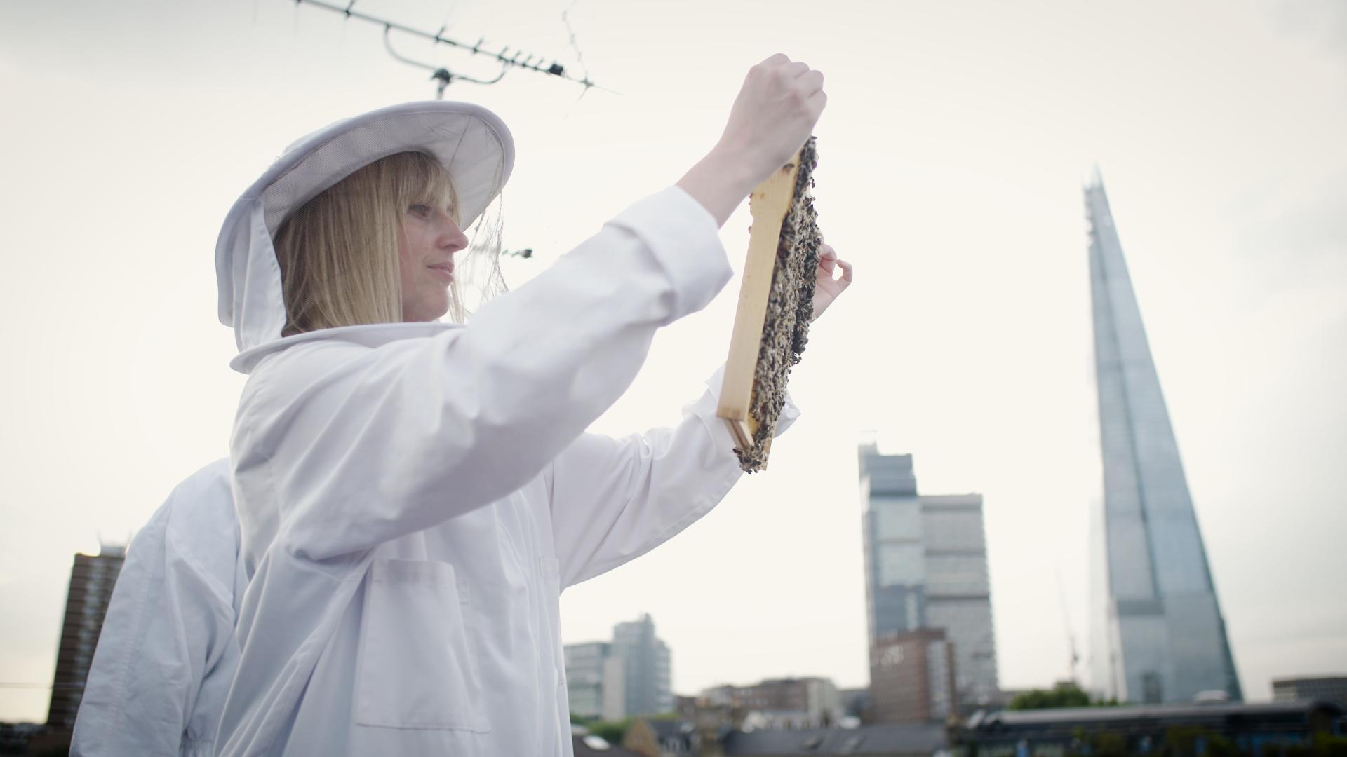 hannah beekeeping